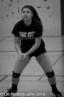 SCC Volleyball Head Shots_2016_-7383